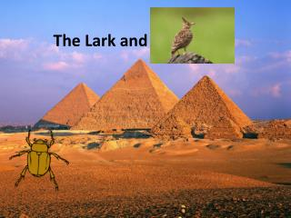 The Lark and the Beetle
