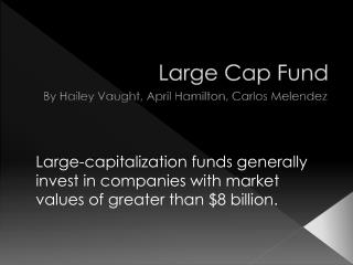 Large Cap Fund