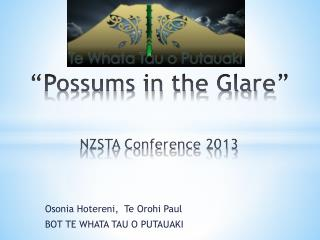 """Possums in the Glare"" NZSTA Conference 2013"