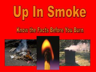 Know the Facts Before You Burn