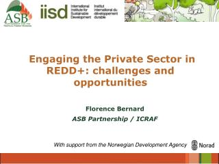 Engaging the Private Sector in REDD+: challenges and opportunities