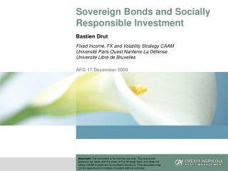 Sovereign Bonds and Socially Responsible Investment Bastien Drut