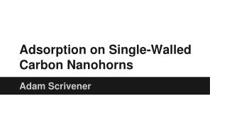 Adsorption on Single-Walled Carbon Nanohorns