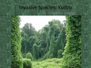 Invasive Species: Kudzu