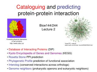 Cataloguing  and  predicting  protein-protein interaction Bioe144/244 Lecture 2