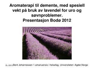 Berit Johannessen 1.amanuensis i helsefag, Universitetet i Agder,Norge