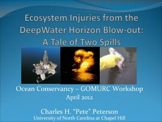 Ecosystem Injuries from the  DeepWater  Horizon Blow-out:  A Tale of Two Spills