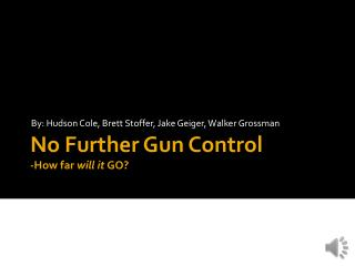 No Further Gun Control -How far  will it  GO?