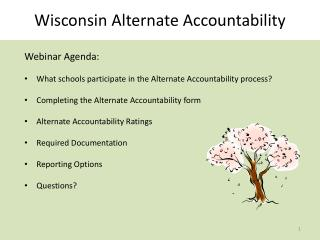 Wisconsin Alternate Accountability