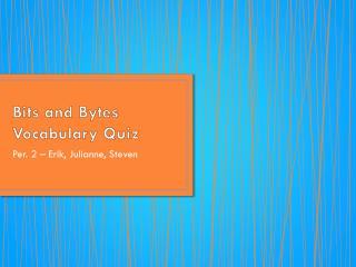 Bits and Bytes Vocabulary Quiz
