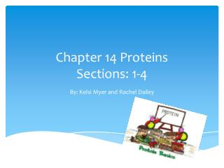 Chapter 14 Proteins Sections: 1-4