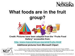 What foods are in the fruit group?