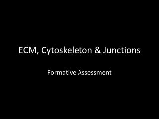 ECM, Cytoskeleton & Junctions