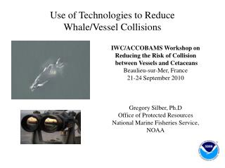 Use of Technologies to Reduce Whale/Vessel Collisions