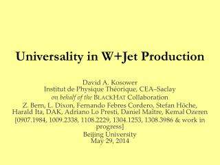 Universality in  W+Jet  Production