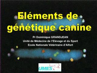 Pr Dominique GRANDJEAN Unité de Médecine de l'Elevage et du Sport Ecole Nationale Vétérinaire d'Alfort