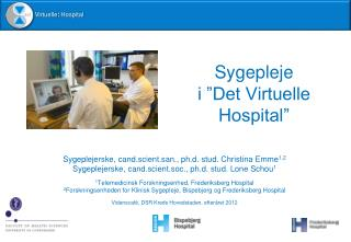 "Sygepleje  i ""Det Virtuelle Hospital"""