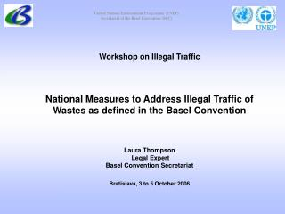 Workshop on Illegal Traffic