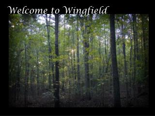 Welcome to Wingfield