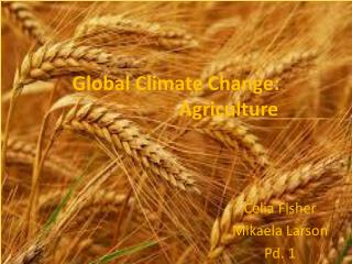 Global Climate Change:  	Agriculture