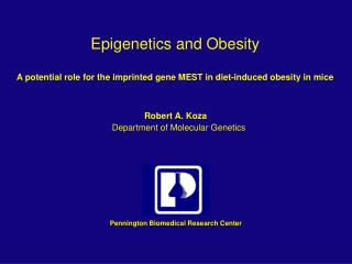 Epigenetics and Obesity