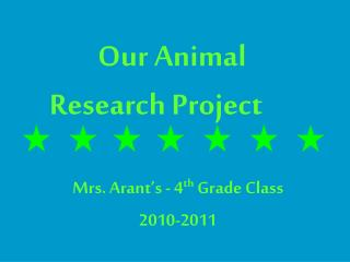 Our Animal  Research Project