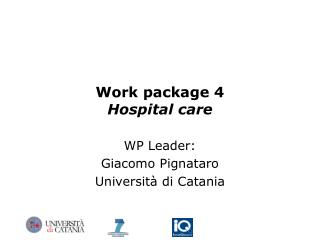 Work package 4 Hospital care