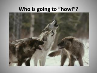 "Who is going to ""howl""?"