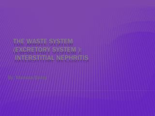 The waste system (Excretory System ):  Interstitial Nephritis