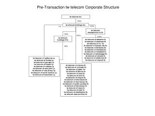 Pre-Transaction tw telecom Corporate Structure