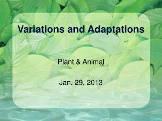 Variations and Adaptations