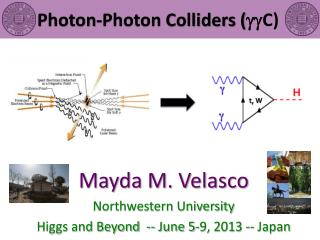 Photon-Photon Colliders ( gg C )