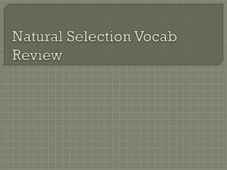 Natural Selection  Vocab  Review