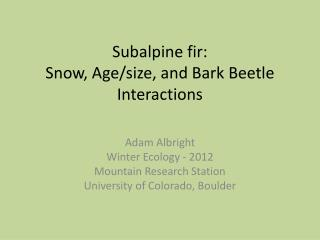 Subalpine fir:  Snow,  A ge/size,  and  B ark Beetle  I nteractions