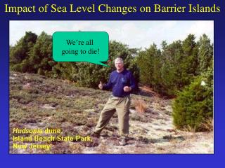Impact of Sea Level Changes on Barrier Islands