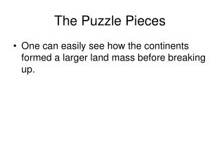 The Puzzle Pieces