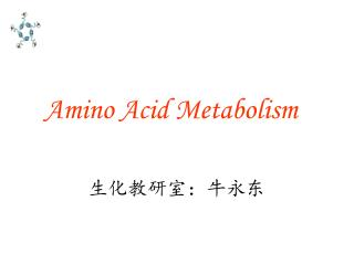 Amino Acid Metabolism