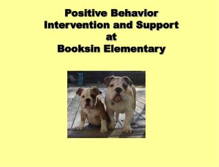 Positive Behavior Intervention and Support  at Booksin Elementary