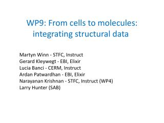 WP9: From cells to molecules: integrating structural data