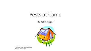 Pests at Camp