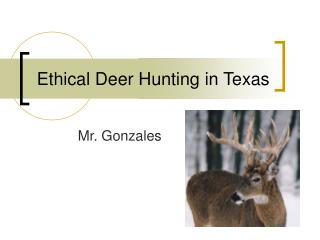 Ethical Deer Hunting in Texas