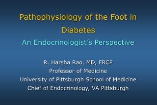 The Foot in Diabetes