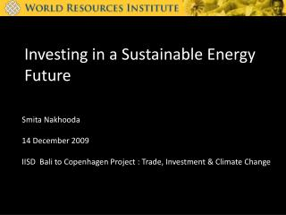 Investing in a Sustainable Energy Future