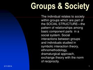 Groups & Society