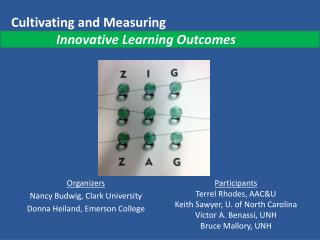 Cultivating and Measuring               Innovative Learning Outcomes