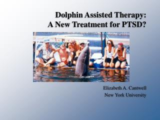 Dolphin Assisted Therapy:  A New Treatment for PTSD?