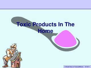 Toxic  Products In The Home
