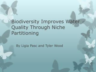 Biodiversity Improves Water Quality Through Niche Partitioning