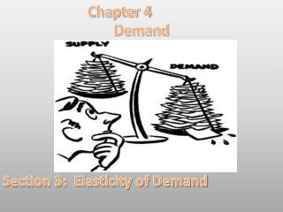 Chapter 4 Demand Section 3:  Elasticity of Demand