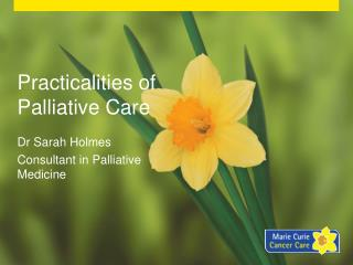 Practicalities of Palliative Care